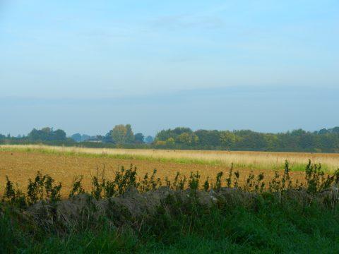 Image of Rural Enstone Parish